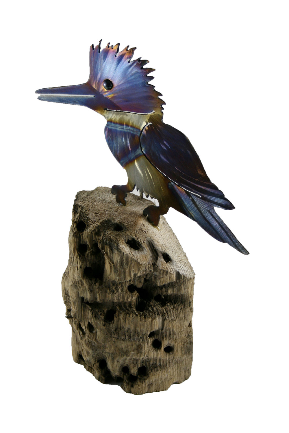 kingfisher 2 kevin mckenzie.jpg