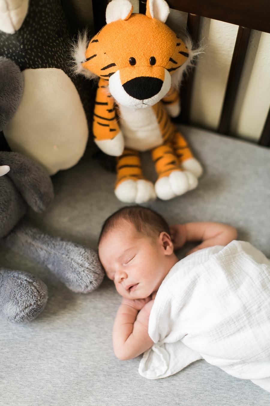 Santa-Clarita-Newborn-Photographer-Taylor-Kinzie-Photography_0250.jpg