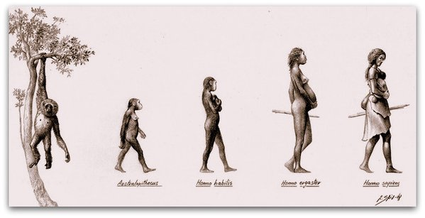 "Illustration Credit: ""Evolution of Women"" by Eduardo Saiz Alonso"