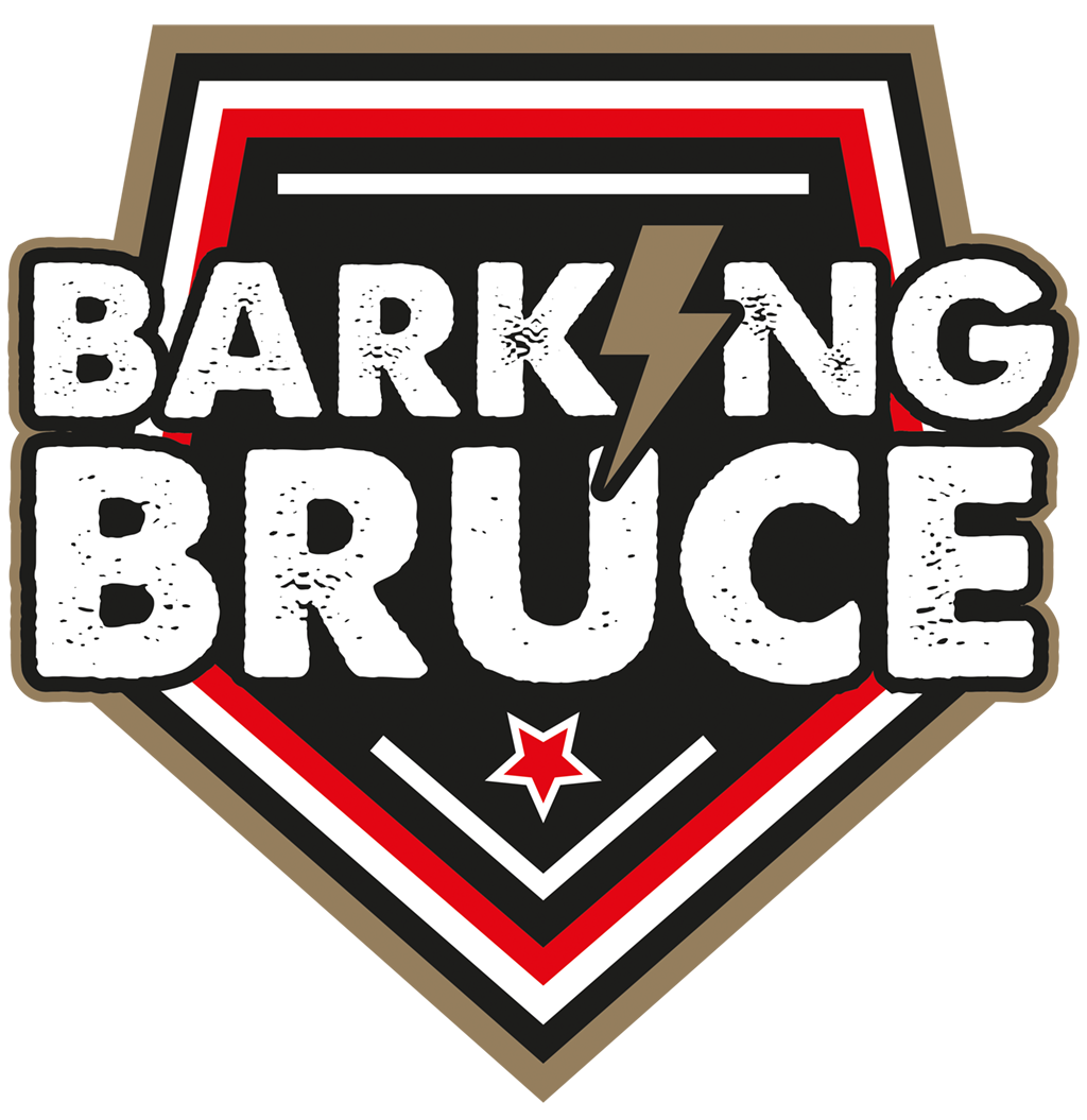 Rock Coverband Barking Bruce