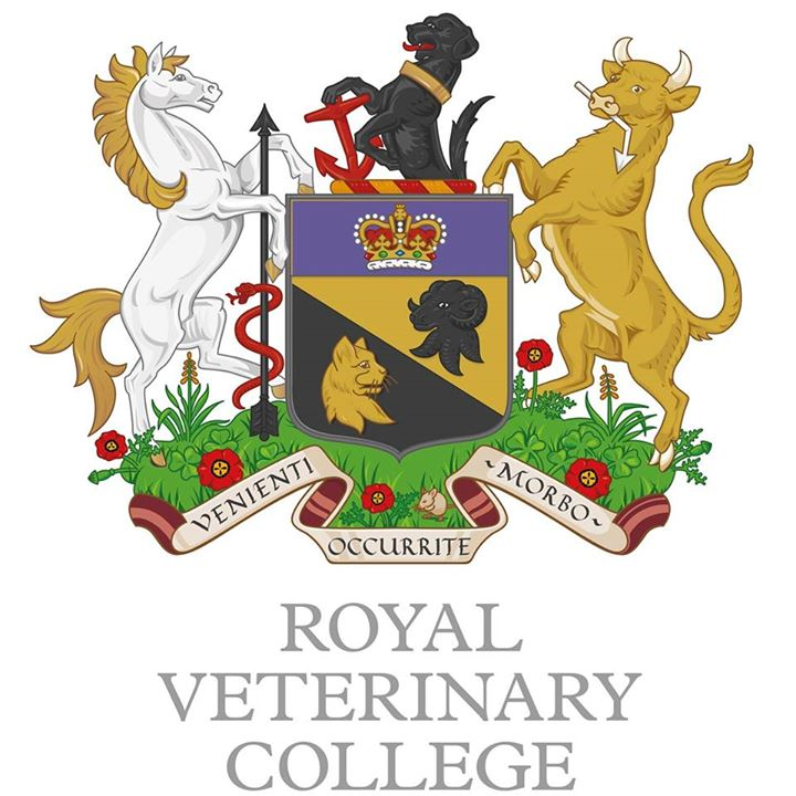 RVC.jpg