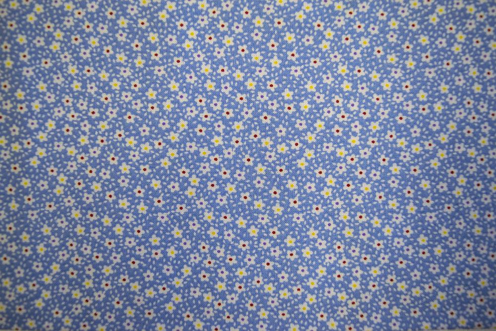 223_49479_blue