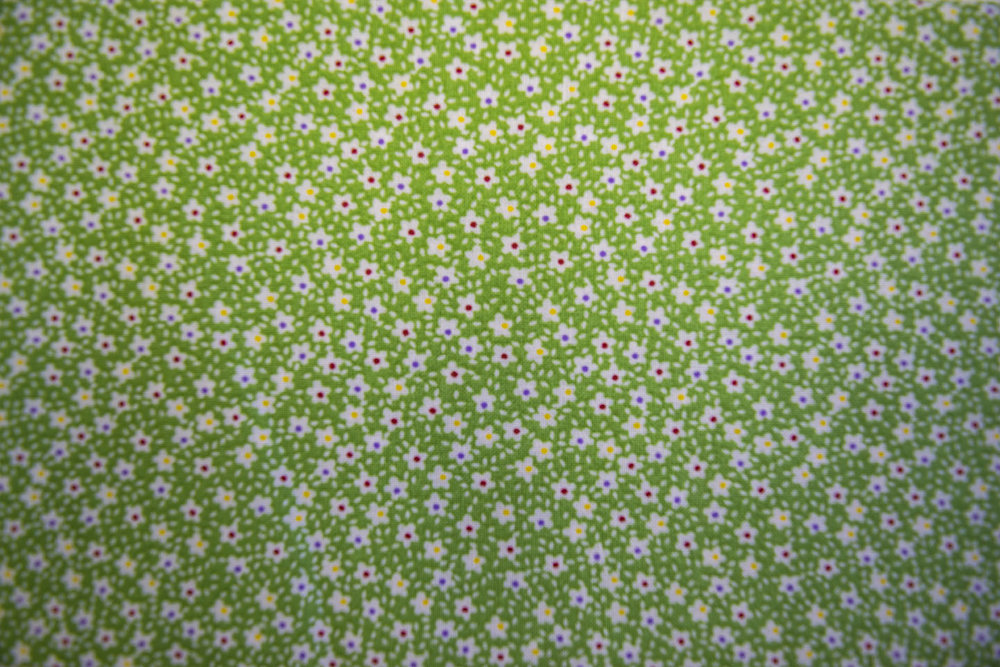 223_49479_green