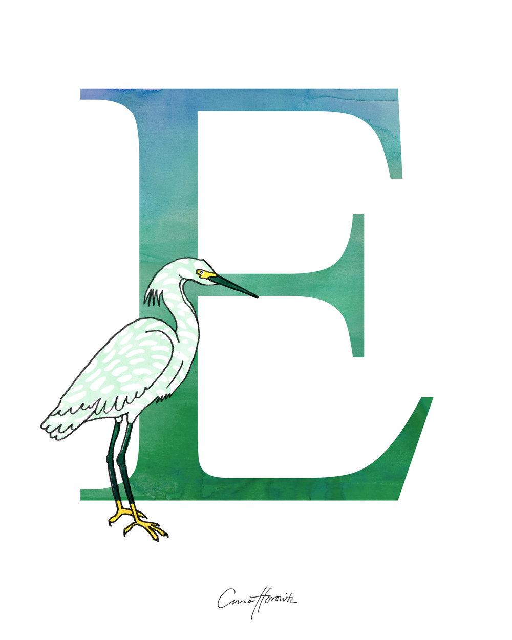 E Egret