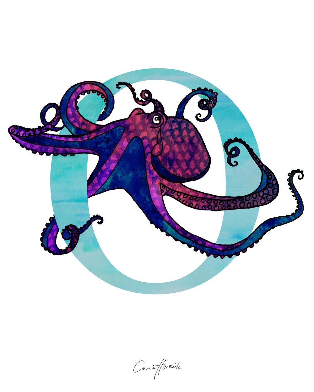 O Octopus