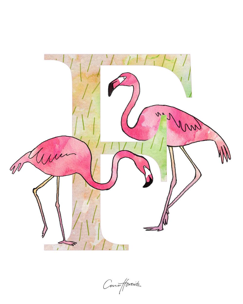 F Flamingo