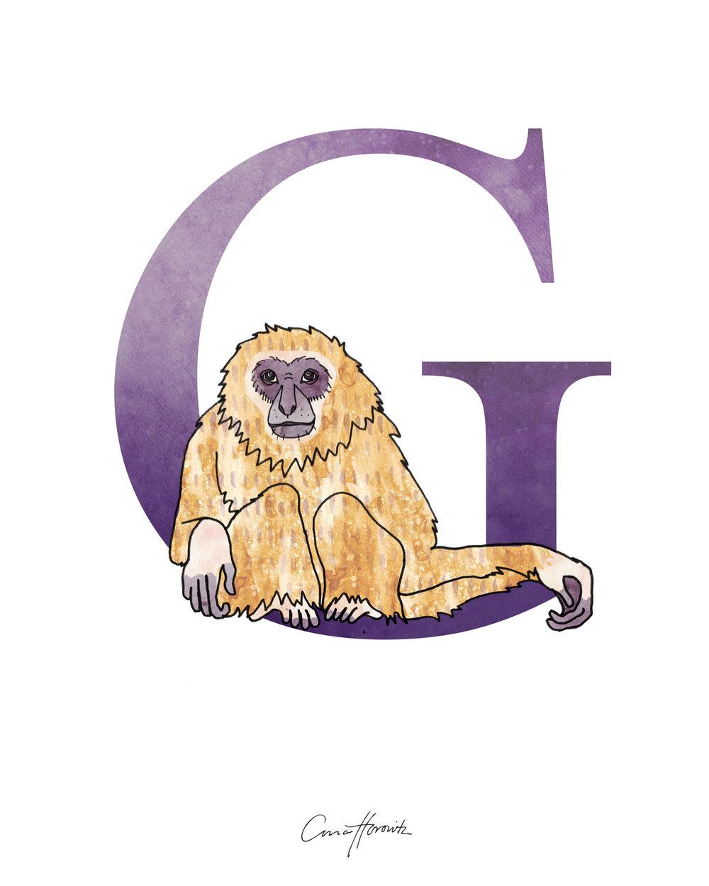 G Gibbon