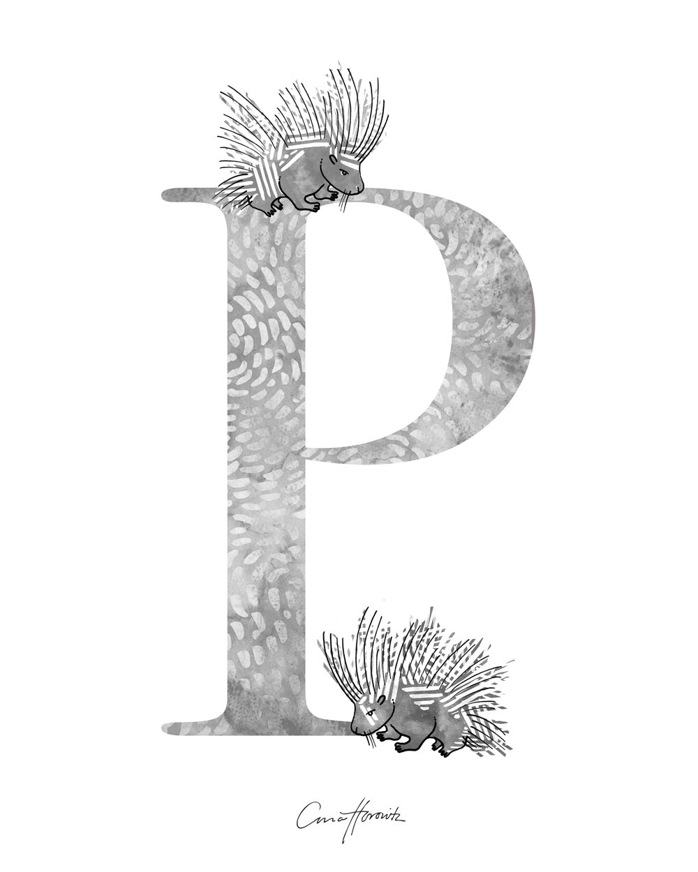 P Porcupine
