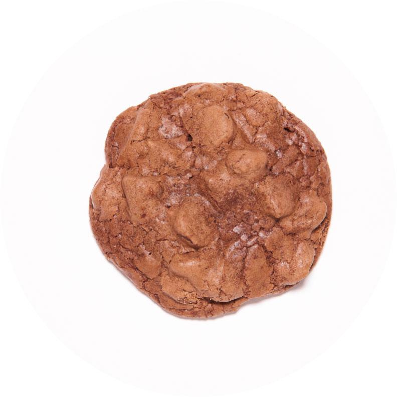 Chocolate_Chocolate_Chip.jpg
