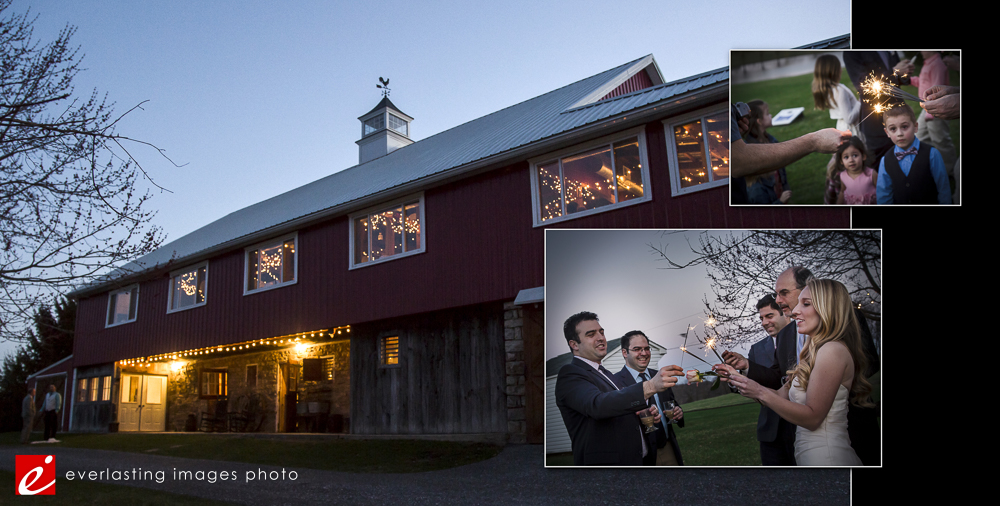 Graybill Farms Rustic Summer Wedding-Everlasting Images Photo- Hershey PA Photographers17.jpg