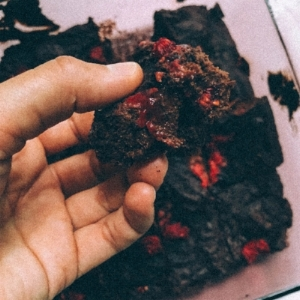 RASPBERRY BLACK BEAN BROWNIES //  photo by Katie lemons // editing by moon cycle bakery