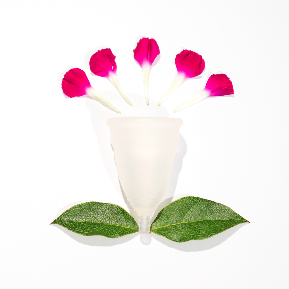 cup_flowers.png
