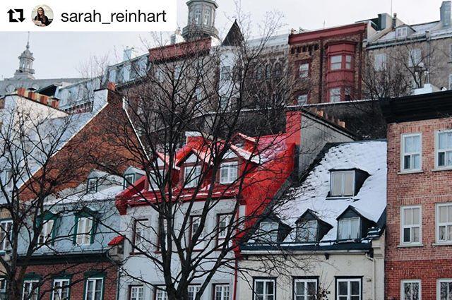 #Repost @sarah_reinhart (@get_repost) ・・・ La ville sous la neige est magique ❄️ ✨#lesloftsstpaul