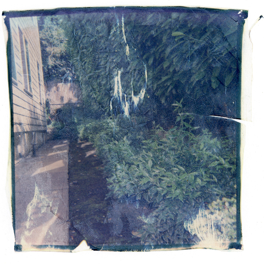 polaroid_transfer_023.jpg