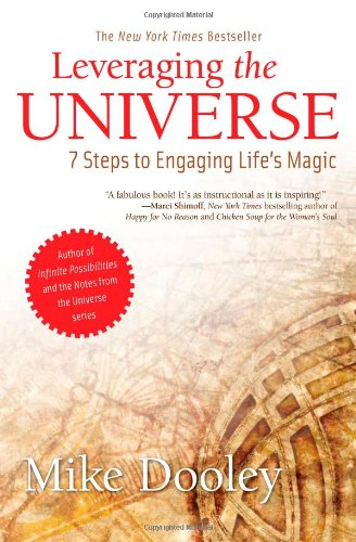 Heidi Stevens Book Recommendation - Leveraging the Universe