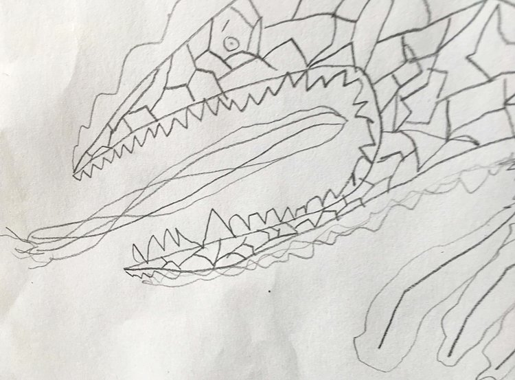Fire Scorpion  (2017). Courtesy of the author's ten-year-old son, Charlie.