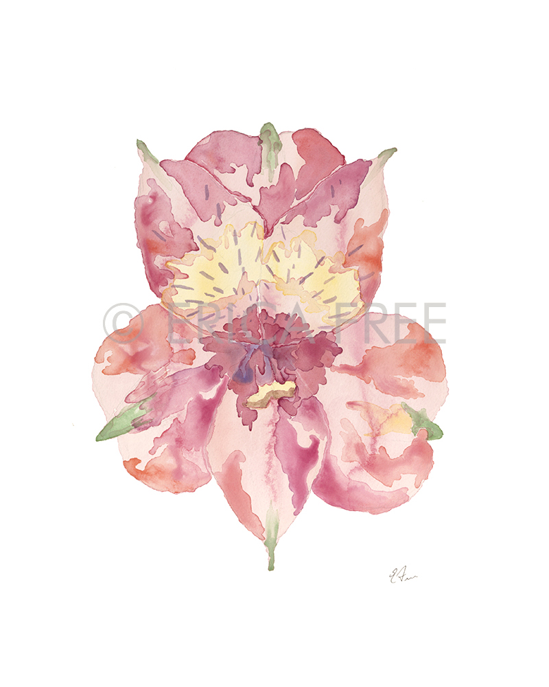 """WILD BLOOM"" WATERCOLOR PAINTING"