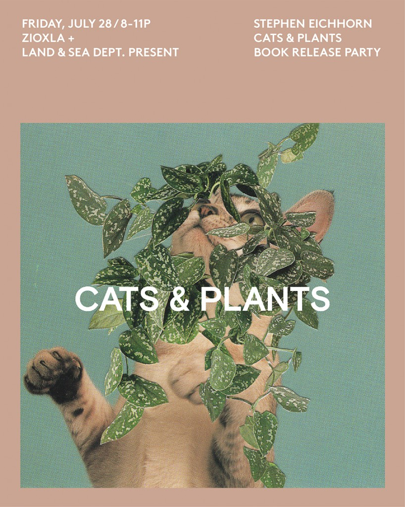 CATS-AND-PLANTS-1-03-818x1024.jpg