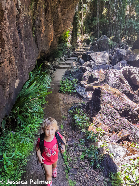 Trillian (aged 20 months) about to walk behind a waterfall on the Twin Falls Circuit Walk at Springbrook National Park in Queensland, Australia.