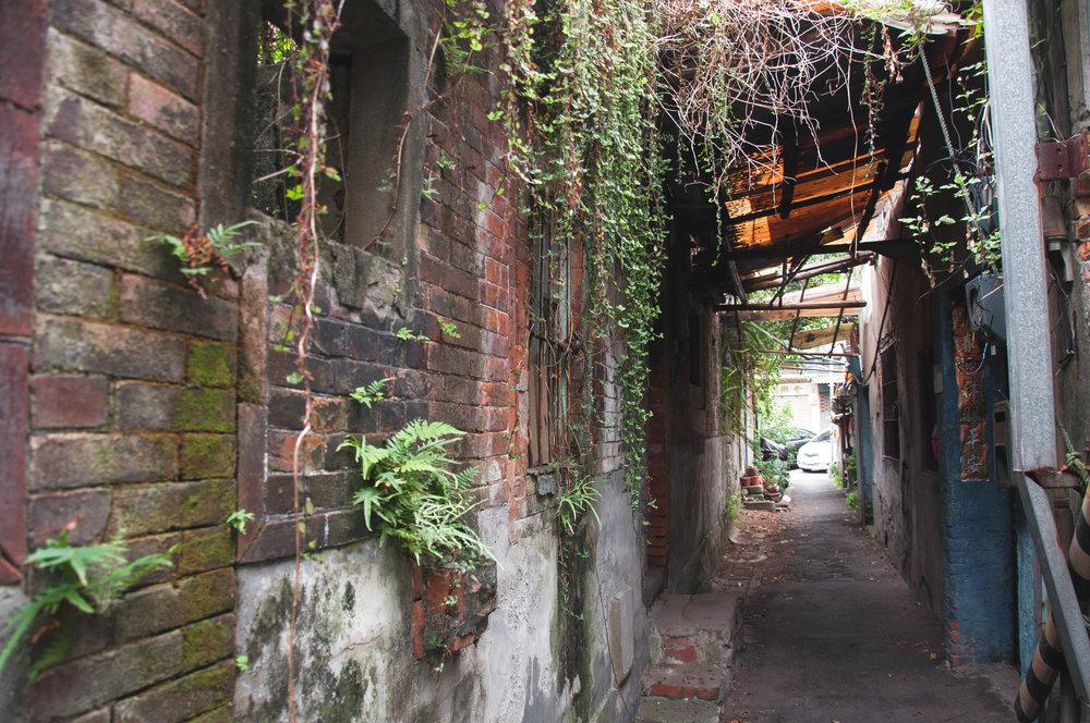 Alley (1 of 1).jpg