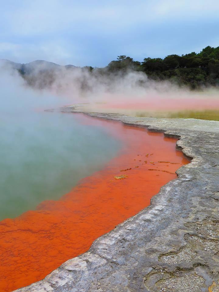 Wai-O-Tapu geothermal park, Rotorua