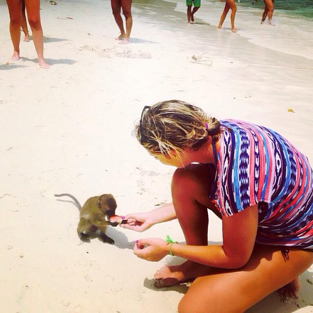 feeding time at Monkey Beach