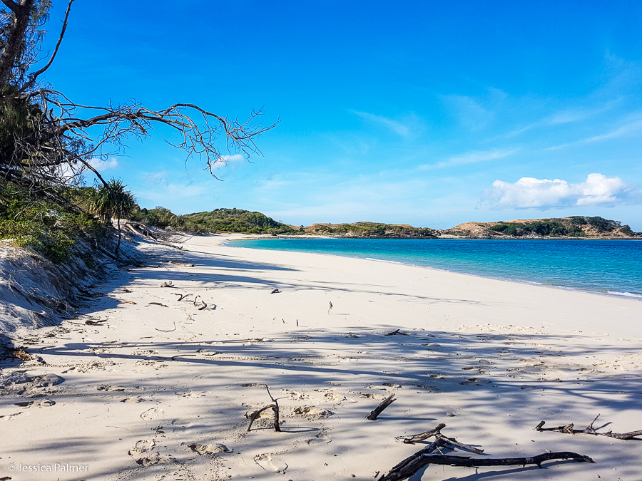 A deserted beach we recently hiked to (6.5 km round trip) with Ripley (aged four) and Trillian (aged two) on Great Keppel Island in Queensland, Australia