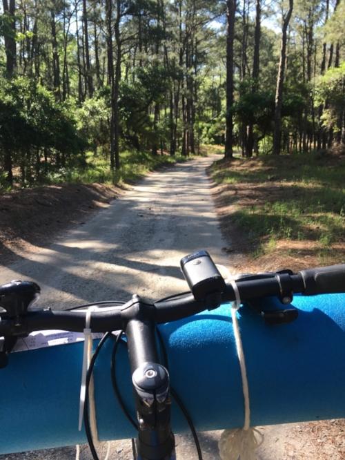 Riding through False Cape State Park