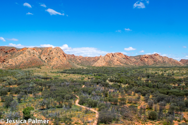 The view from the edge of the crater at Tnorala (Gosse Bluff) in Central Australia