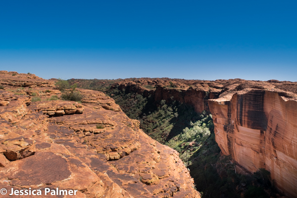 View from the Scenic Rim Walk at Kings Canyon in Central Australia
