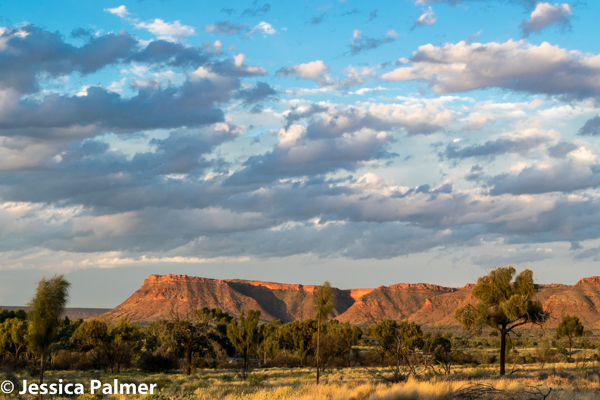 Looking towards Watarrka National Park and Kings Canyon in Central Australia