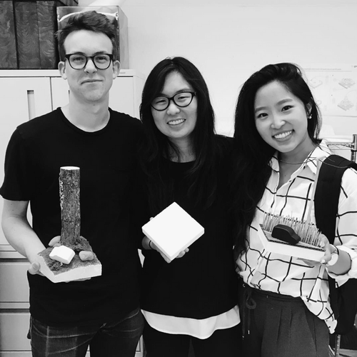Team Motion:  Max Plummer, me, and Tina Park holding props from our stop motion service video.