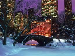 NY-Central-park.jpeg