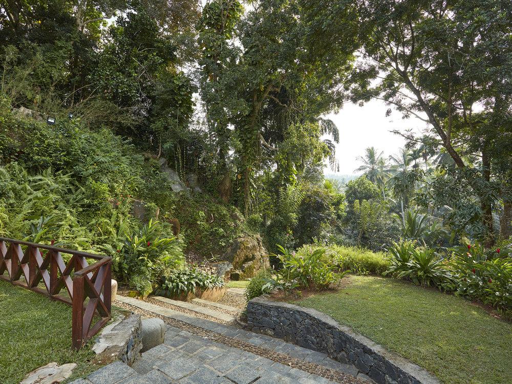 17-Pooja Kanda - Lush landscape 2.jpg