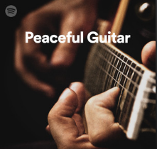 A very peaceful guitar playlist that I'm lucky to have a track on!