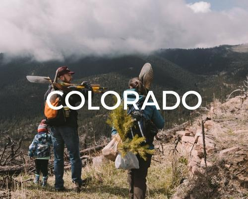 COLORADO_600x.jpg