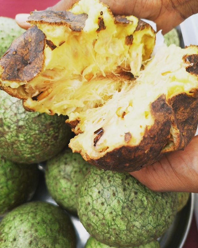 Breadfruit: Fruits of Jamaica