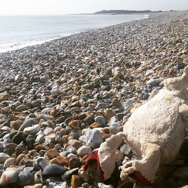 A headless #teddybear 'watching' over Church Norton beach :( ... makes you wonder how he ended up washed up on a beach.  What was his #story? #conservation #plasticpollution #cleanseas #recycle #dronesforgood #dronenerd