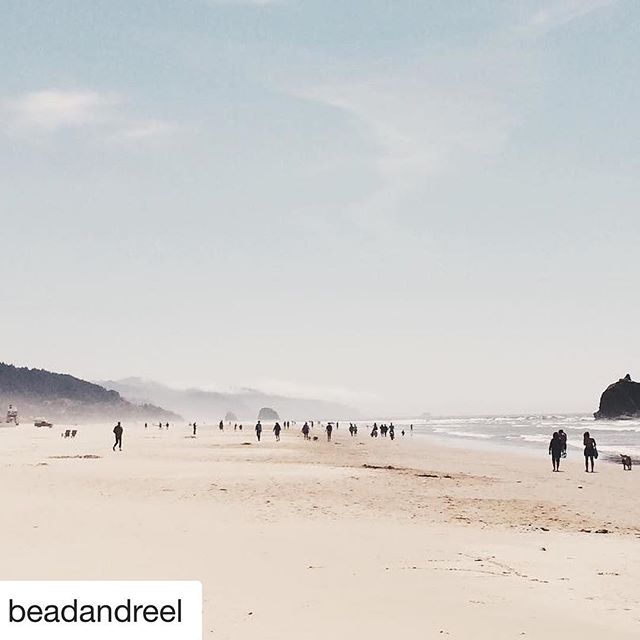 #Repost @beadandreel  Happy April! It's time for us to #giveback to a new Cause of the Month and what could be neater than one which combines plastic pollution, drones, a female filmmaker, and the beach. Yeah, we're excited too. Link in profile to meet @ellieworldwide of @visionfromtheskies
