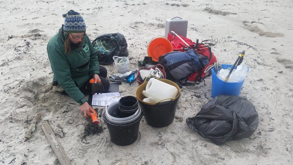 Janie busy preparing the kit for the Marine Conservatoin Society survey