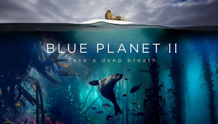 blue-planet-lates-c-bbc-lisa-labinjoh-joe-platko-2017-calendar.jpg