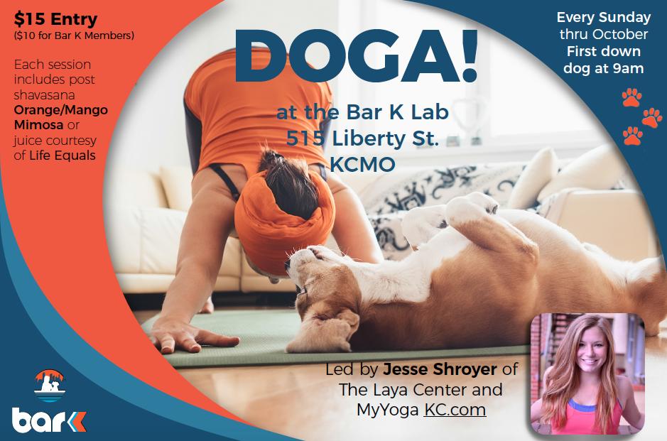 DOGA at Bar K Dog Bar