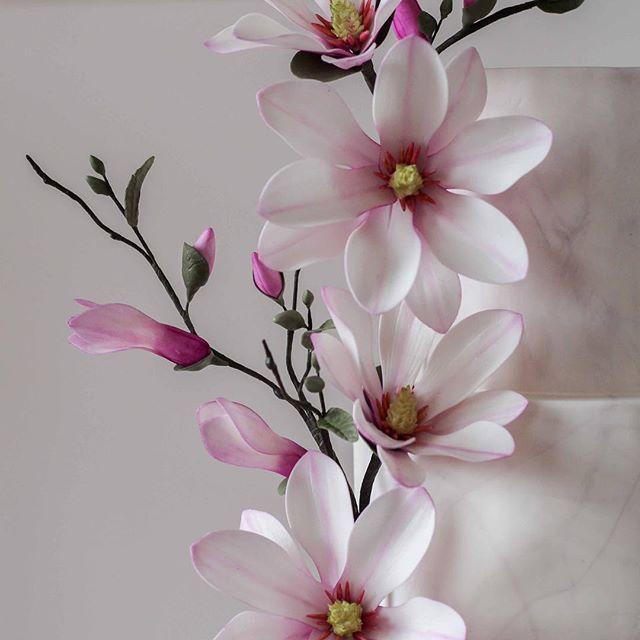 Magnolia ❤️ #cake #cakedecorating #caketutorial #magnolia #foodphotography #weddingcake #modernkake #cakestagram #instacake #sugarflowers #gumpasteflowers #fondant #wedding