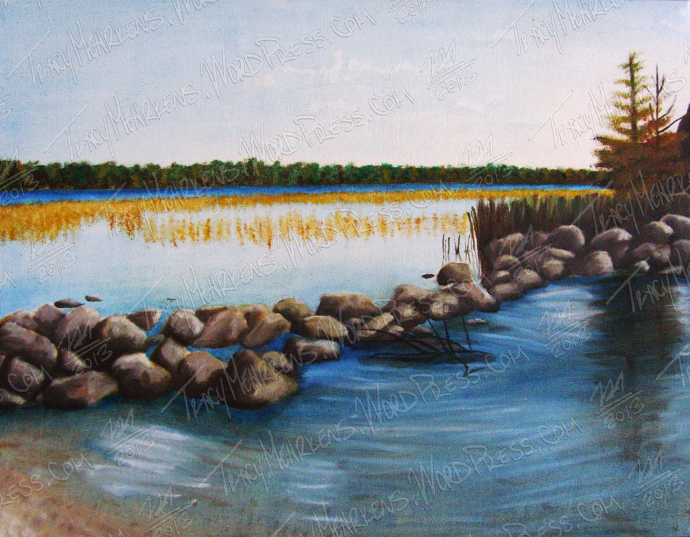 Mississippi Headwaters. Oil on Canvas. 23x18 in. 2013.