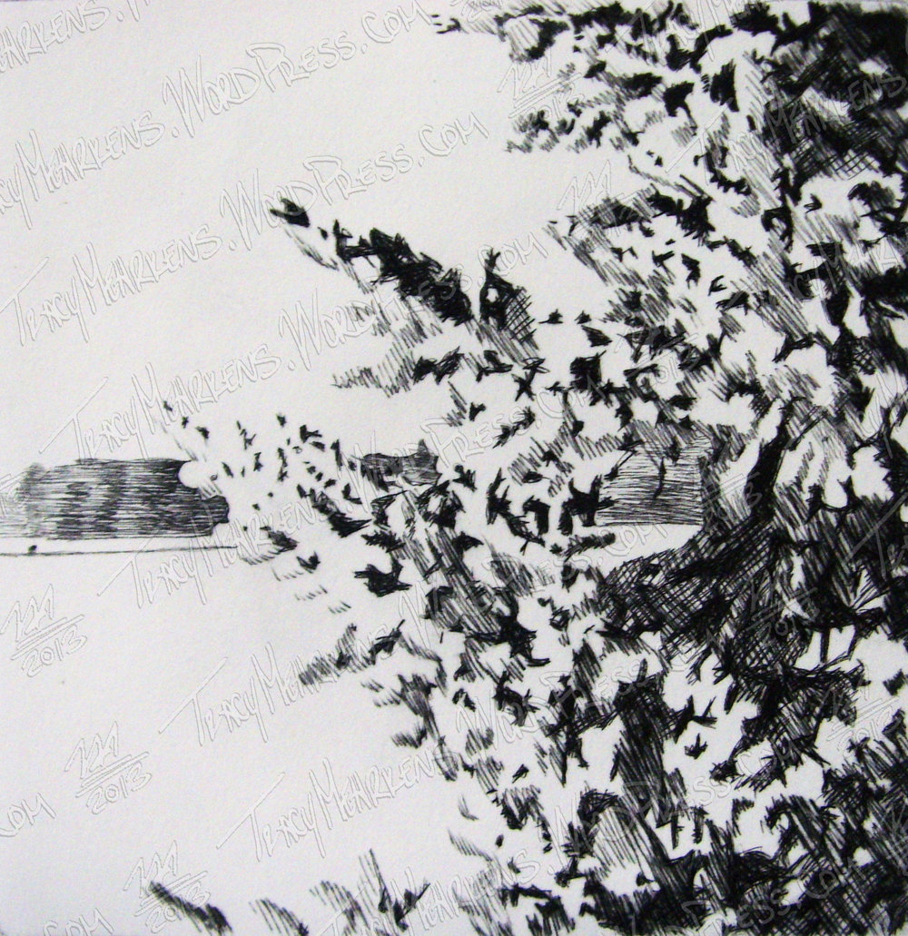 Copy of Snowballs. Ink on Paper. 2013.
