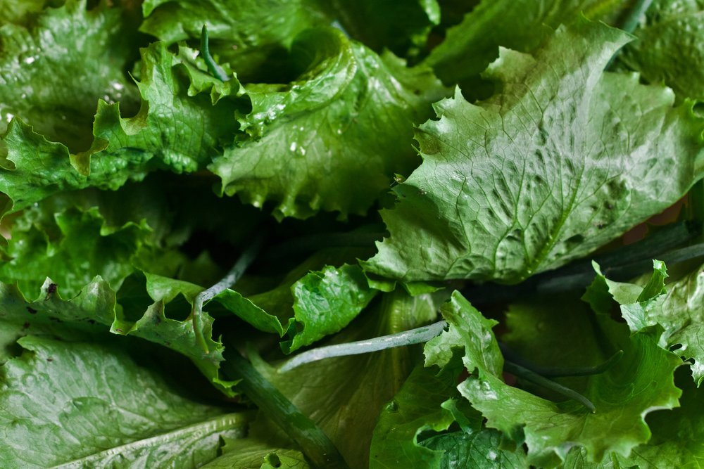 healthy-lettuce-salad-5604.jpg