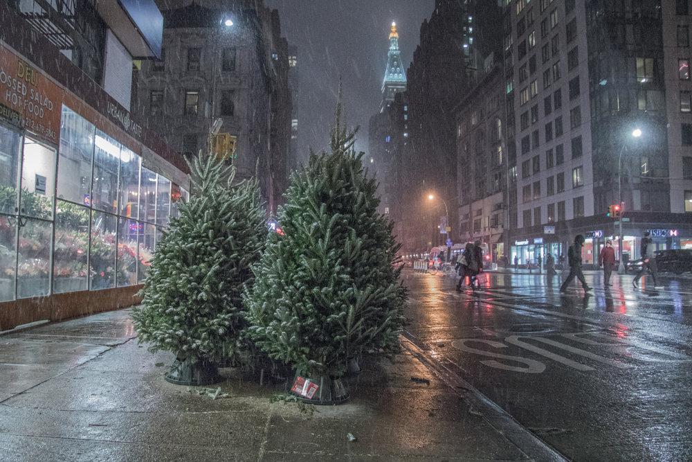 NYC Christmas- Steve Ettinger