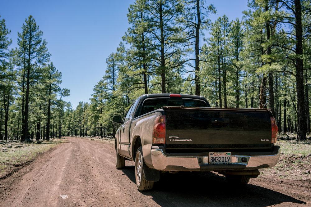DSC01061-Arizona.jpg