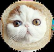 Most-Famous-Felines-034.png