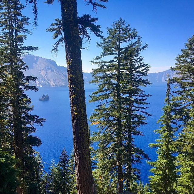 Craggily peaks of Ship Rock, eternally anchored in Crater Lake, Oregon. Quick view captured while riding the rim on one of the park's two car-free days. 33mi, 3500ft elevation gain. #craterlake #ridetherim #greenairday #oregonoutside #getoutside #nationalpark #views #from #a #borrowed #and #kickass #gravelbike